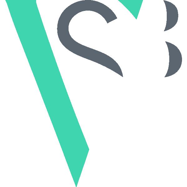 Logomarca Vida Sem Barreiras (cor original)
